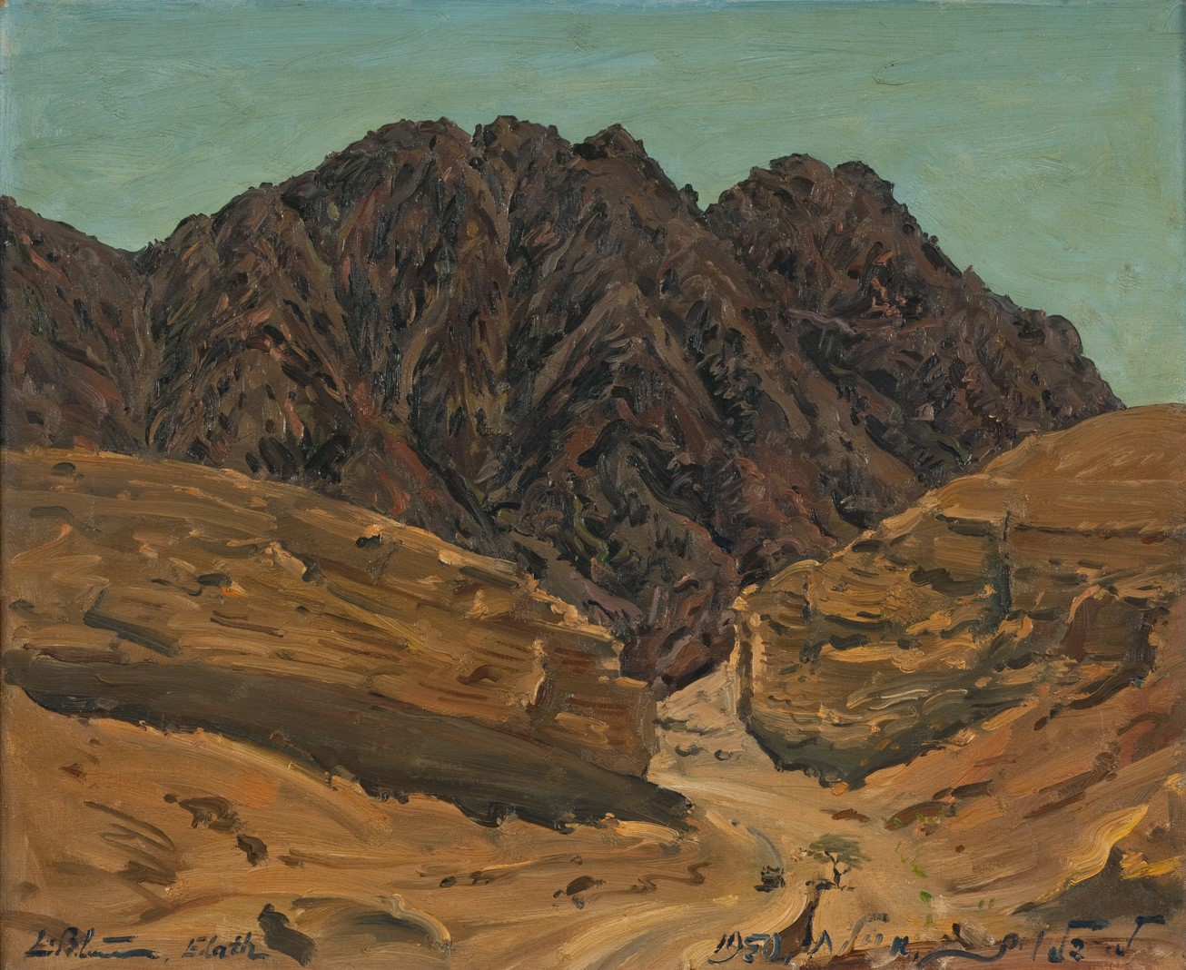 הר שלמה